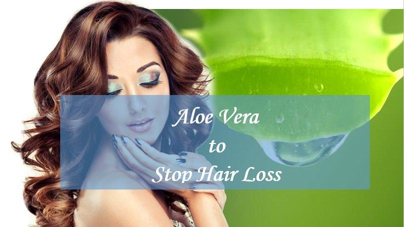 Aloe Vera Hair Loss