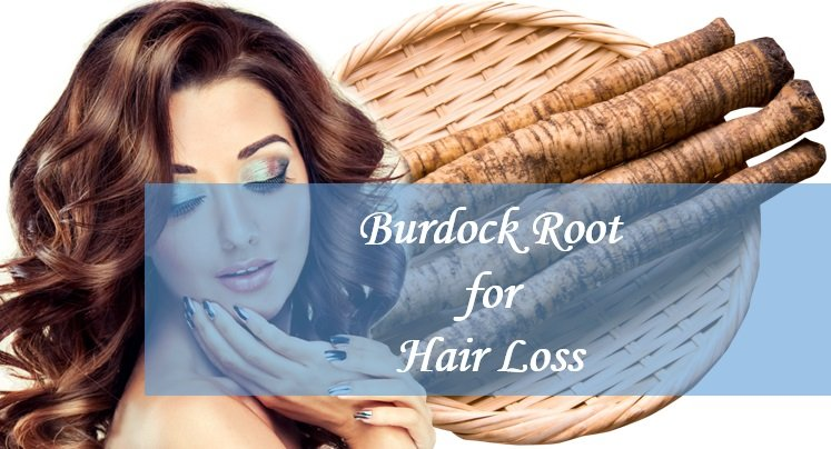 Burdock Root and Oil for Hair